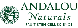 Andalou Naturals - Avo Cocoa Skin Food Mask